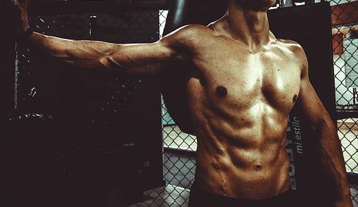 Muscle et étirement