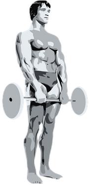 muscle et prise de force
