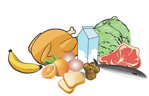 muscle protéines
