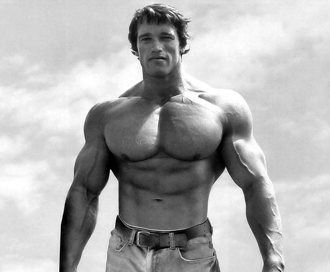 Muscle : 12 conseils pour un gain rapide !