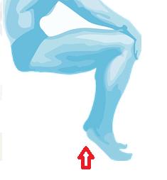 tendon renfo