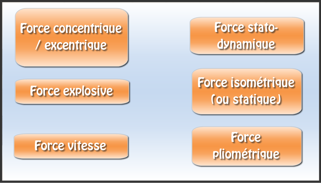 Force plusieurs types