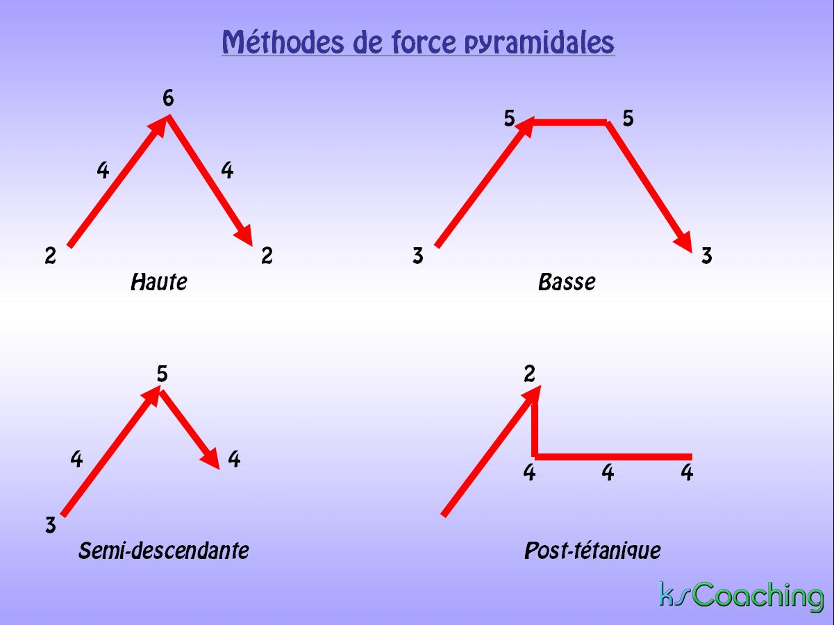 Force pyramidales