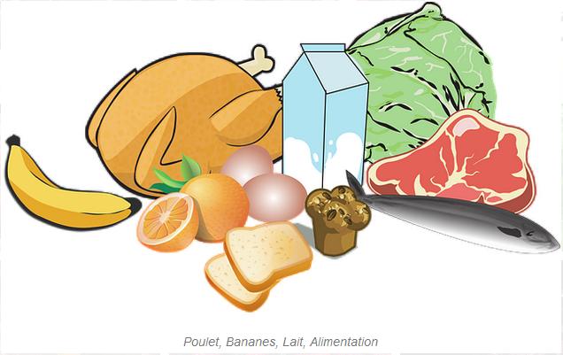 Comment bien manger? 6 étapes