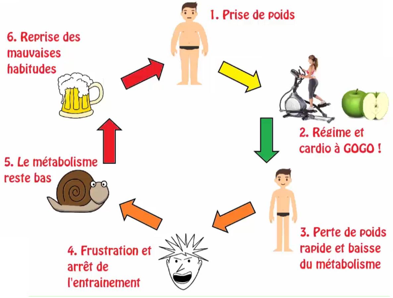 Métabolisme effet yo-yo