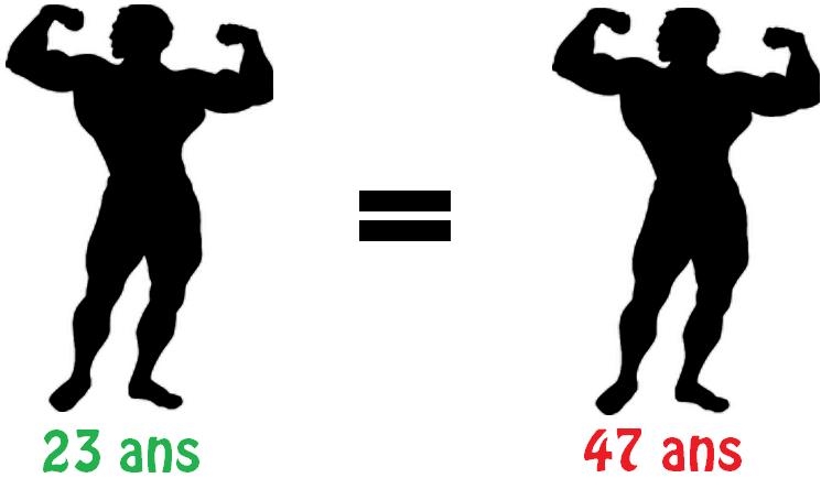 âge égalité muscle