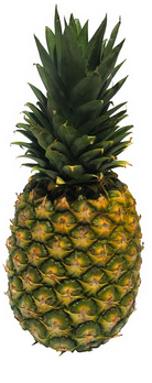 fruits ananas musculation