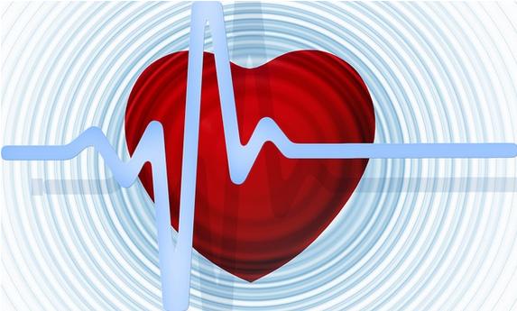 programme cardio-training débutant battement coeur