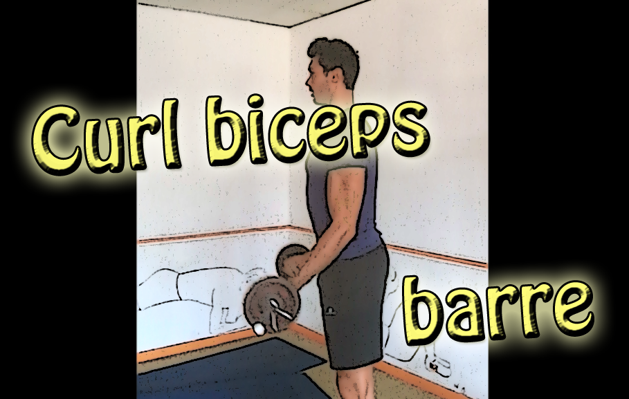 Curl biceps à la barre
