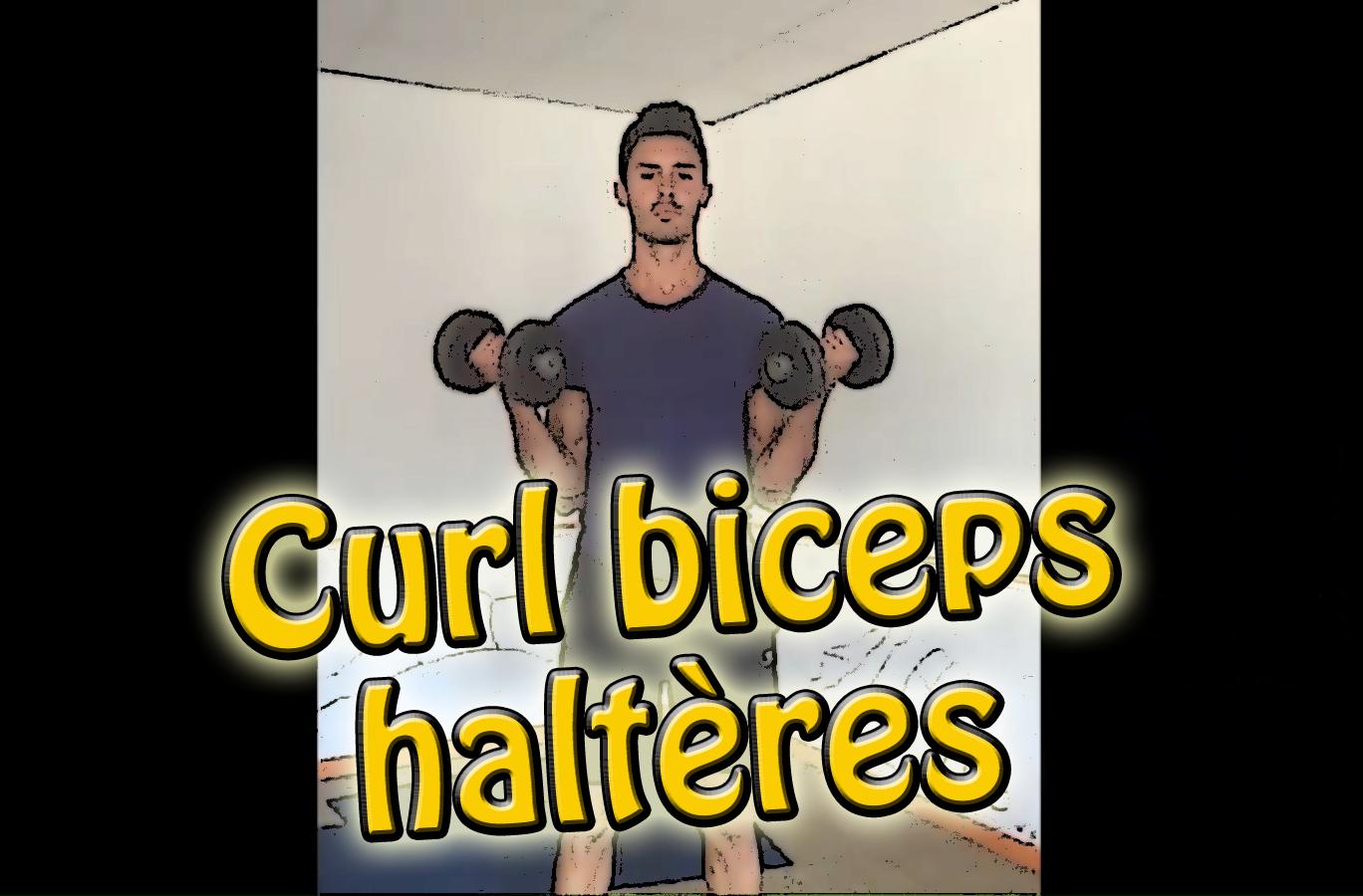 Le Curl haltères pour les biceps – exercice de musculation