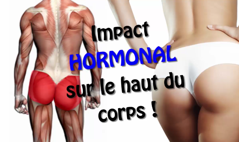 masse musculaire impact hormonal