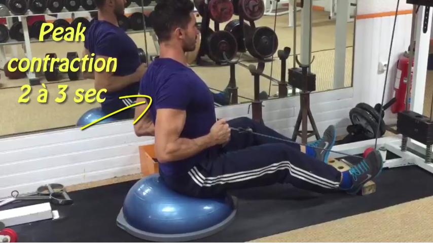muscles peak contraction